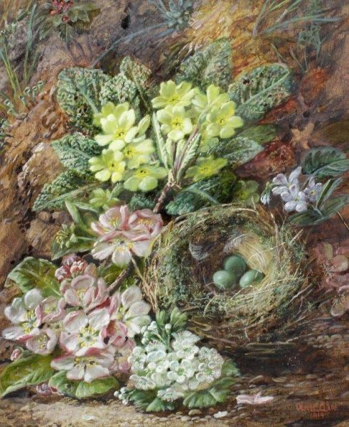 Birds Nest with Primroses and Apple Blossom