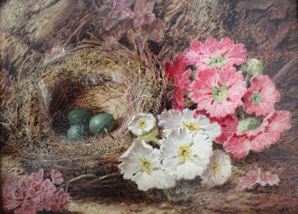 Still Life of Birds Nest and Flowers